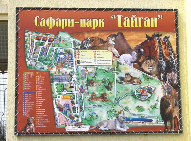"Сафари-парк ""Тайган"" в Белогорске"