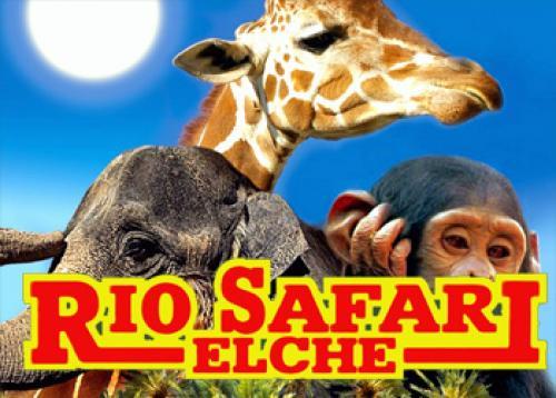 Rio_Safari_Elche_350_977474537