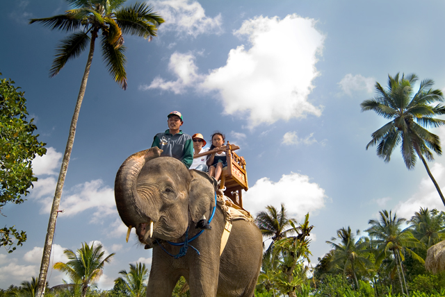 bali_elephant_riding_5